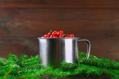 Airela, foxberry, arando, lingonberry em uma caneca de alumínio em uma tabela de madeira marrom Cercado por ramos do abeto Fotos de Stock Royalty Free