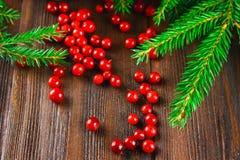 A airela, foxberry, arando, lingonberry sorve em uma tabela de madeira marrom Cercado por ramos do abeto Fotografia de Stock Royalty Free
