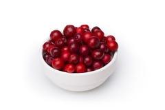Airela (foxberry, lingonberry) Foto de Stock