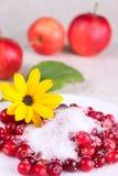 Airela no açúcar em um prato branco com flor Imagens de Stock