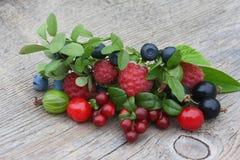 Airela, uva-do-monte, groselha, mirtilo, corinto, cereja, grosa Imagem de Stock Royalty Free