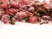 Airelas e açúcar e cravos-da-índia secados Fotografia de Stock