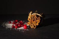 Airelas e canela Arandos no açúcar e na canela stic Imagens de Stock Royalty Free