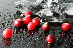 Airelas e gelo Imagens de Stock