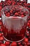 Airelas e suco em um vidro Fotografia de Stock