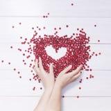 Airelas no fundo branco Quadro do coração e mãos fêmeas Foto de Stock Royalty Free
