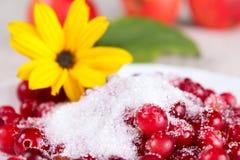 Airelle rouge en sucre contre une fleur jaune Photos stock