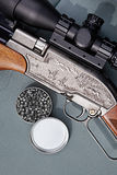 Airgun and bullets Stock Photography
