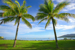 Airlie Beach Australia. Tropical landscape view of Airlie Beach in the Whitsundays, North Queensland Australia Stock Images