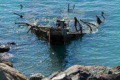 Airlie strandskeppsbrott Fotografering för Bildbyråer