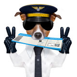 Airline pilot flight attendant check in  ticket Stock Photo