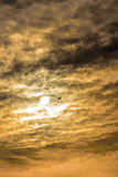 An airliner flying under the sun. Royalty Free Stock Image
