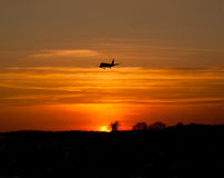 Airliner landing at dusk. Airliner silouetted against a red setting sun during the final stages of a landing approach at Heathrow Airport Royalty Free Stock Images