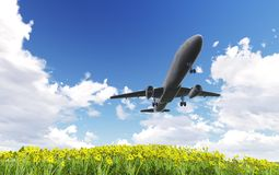 Airliner passing over flowers Royalty Free Stock Images