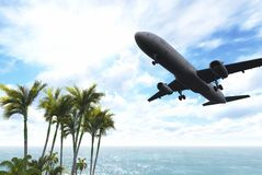Airliner passing over palm trees Stock Photography