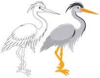 Airone illustrazione vettoriale