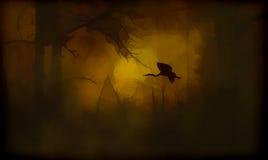 Airone blu astratto al tramonto fotografia stock