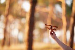 Airplan pequeno nas mãos novas Dia ensolarado Tempo da família em uma caminhada na floresta do verão Fotografia de Stock