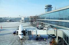 Airplane in airport Domodedovo Stock Image