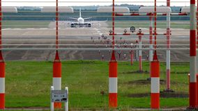 European hare near runway. Airplane braking after landing in Dusseldorf. European hare Lepus europaeus near runway stock footage