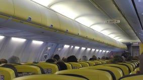 Airplane cabin passengers stock video