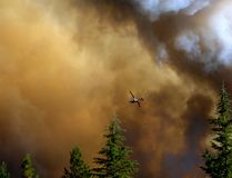 Airplane fighting fire in Bass Lake, California Royalty Free Stock Photos