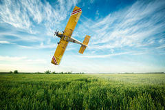 Airplane flies over a wheat field spraying fungicide and pesticide. Crop duster airplane flies low over a wheat field spraying fungicide and pesticide stock image