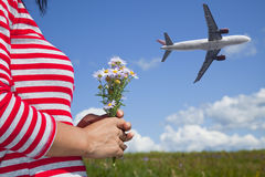 Airplane and flower royalty free stock images