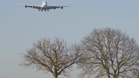 Airplane flying over trees in winter stock footage