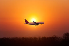 Airplane landing against the setting sun Royalty Free Stock Photography