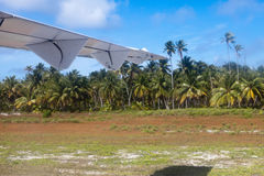 Airplane landing on a landing band among palm trees Royalty Free Stock Image
