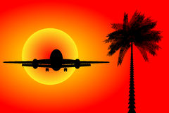 Airplane landing at sunset Royalty Free Stock Image