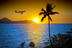 Airplane Ocean Palm Tree Tropical Sunset. A tropical ocean sunset, palm tree with a passenger airline flying through the scene Stock Photo