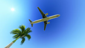 Airplane over the palm tree Royalty Free Stock Image