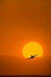 Airplane taking with bright orange sunrise. In the background Royalty Free Stock Photos