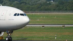 Airplane taxiing before departure stock video