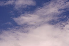 Airplane under the fresh blue sky and clouds in bright day. Royalty Free Stock Photos