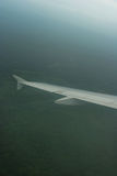 Airplane wing. Above dense forest royalty free stock image