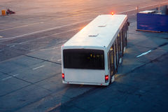 Airport bus at the morning airport apron. Near the terminal under construction Royalty Free Stock Photography