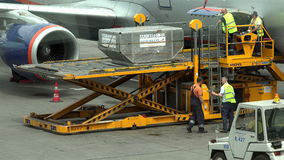 Airport workers in the work overload luggage containers and pallets `Trepel` forklifts