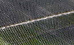 Airshot dos campos Fotografia de Stock Royalty Free