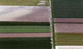 Airshot dos campos Imagem de Stock Royalty Free