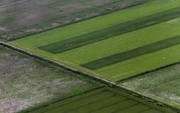 Airshot von Feldern Stockfotos