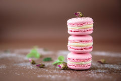 Airy and delicious tasteful rose and vanilla Macarons with buds of roses. Traditional french eco-friendly dessert. Airy and delicious tasteful rose and vanilla Royalty Free Stock Image
