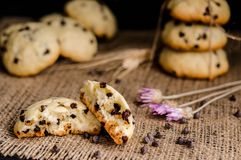 Homemade cookies with chocolate drops filling on a black background royalty free stock photos