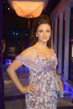 Aishwarya Rai Bachchan Lizenzfreies Stockbild