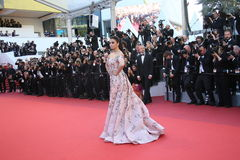 Aishwarya Rai Bachchan Royalty Free Stock Images