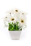 Aislado de la flor falsa con el florero en blanco Foto de archivo libre de regalías