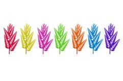 Aislado siete hojas del color de los días Imágenes de archivo libres de regalías