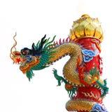 Aislante chino del dragón en blanco Fotografía de archivo
